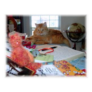 Cartão Postal Dois gatos vermelhos