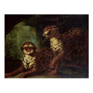 Cartão Postal Dois leopardos, C. 1820