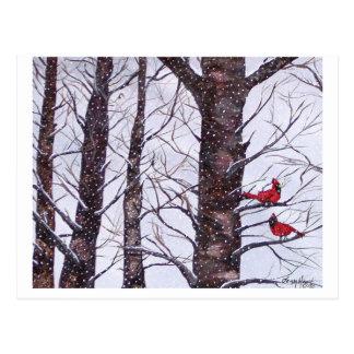 Cartão Postal dois pássaros vermelhos no inverno, Copyright 2005