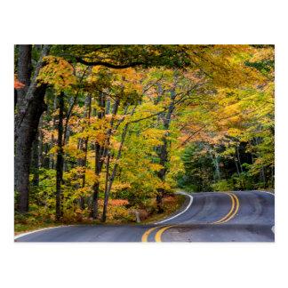 Cartão Postal Dossel do outono da cor ao longo da estrada 41