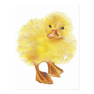 Cartão Postal ducky, pintinho do bebê