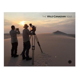 Cartão Postal Dunas de areia de Athabasca