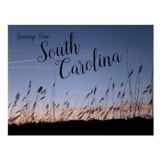 Cartão Postal Dunas de areia de South Carolina