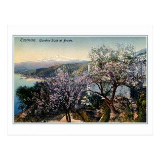 Cartão Postal Duque do jardim de Sicília do vintage de Bronte