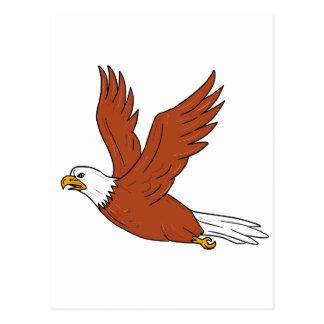Cartão Postal Eagle irritado que voa desenhos animados