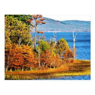 Cartão Postal Eagles no lago Sardis