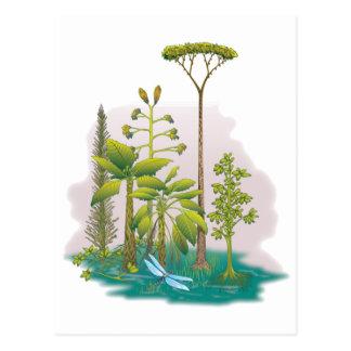 Cartão Postal Ecologia: plante uma árvore -