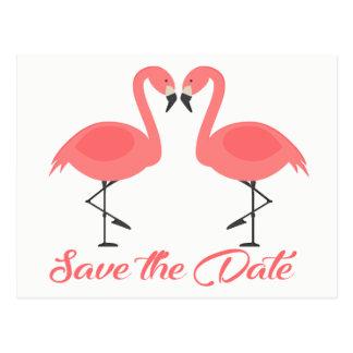 Cartão Postal Economias cor-de-rosa do flamingo o casamento do