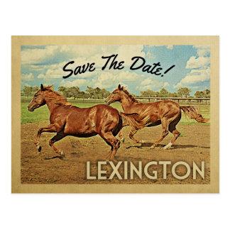 Cartão Postal Economias de Lexington os cavalos de Kentucky da