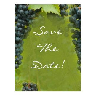 Cartão Postal Economias do casamento do tema do vinhedo do vinho