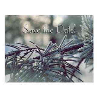 Cartão Postal Economias do país das maravilhas do inverno o