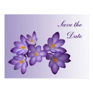 Cartão Postal Economias florais do primavera roxo o casamento da