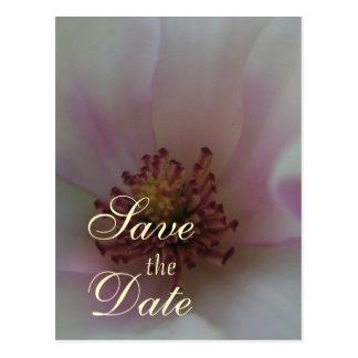 Cartão Postal Economias matizadas da flor do casamento do