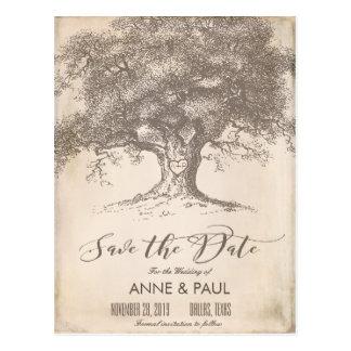 Cartão Postal Economias velhas do papel da árvore a data