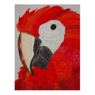 Cartão Postal Edredão do papagaio