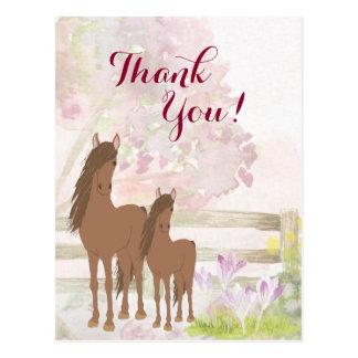 Cartão Postal Égua bonito de Brown, potro, obrigado do cavalo