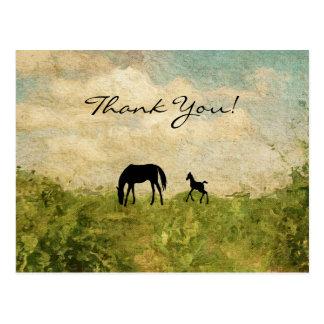 Cartão Postal Égua da silhueta e obrigado bonitos do cavalo do