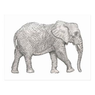 Cartão Postal Elefante cortado