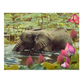 Cartão Postal Elefante do bebê e flores de Lotus