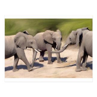 Cartão Postal Elefantes no jogo