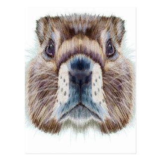 Cartão Postal Em segundo fevereiro - dia da marmota - dia da