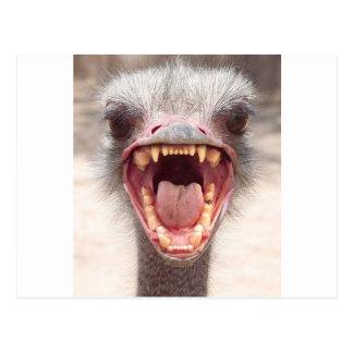 Cartão Postal emu