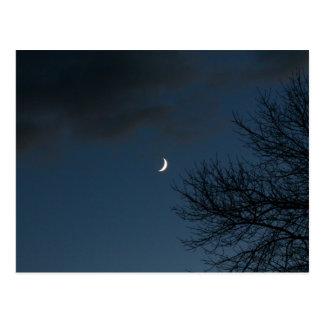 Cartão Postal Encerando a lua crescente no Sagitário