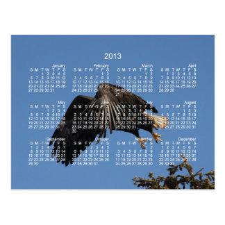 Cartão Postal Encoberto pelas asas; Calendário 2013