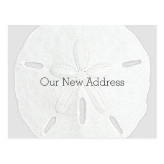 Cartão Postal Endereço novo litoral preto e branco do dólar de