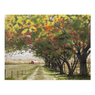 Cartão Postal Entrada de automóveis do outono