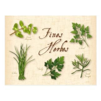 Cartão Postal Ervas receita das multas, salsa, cebolinho,