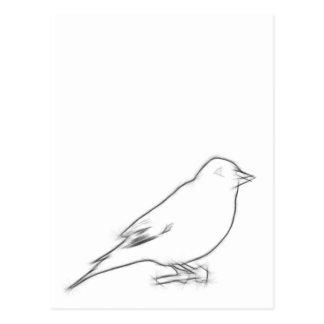 Cartão Postal Esboço do passarinho