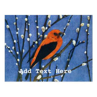 Cartão Postal Escarlate de Tanager