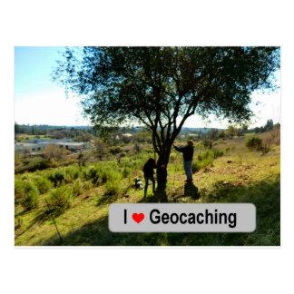 Cartão Postal Esconderijo do gancho da árvore em Geocaching