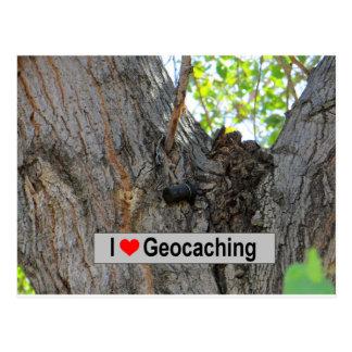 Cartão Postal Esconderijo do gancho da árvore: Geocaching