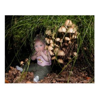 Cartão Postal Escoteira-mirim ao fungo de árvore