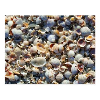 Cartão Postal Escudos do mar