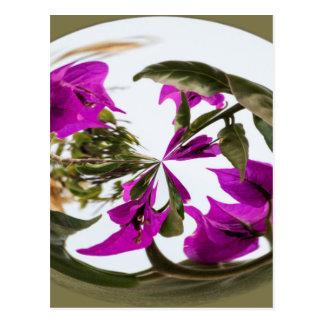 Cartão Postal Esfera da flor roxa e branca