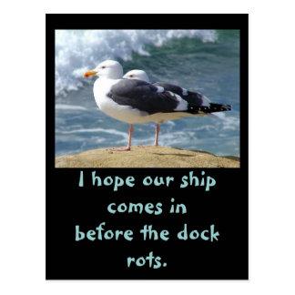 Cartão Postal Espere nosso navio, mim esperam que nosso navio
