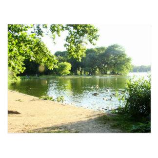 Cartão Postal Esplendor da beira do lago