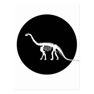 Cartão Postal esqueleto do camarasaurus