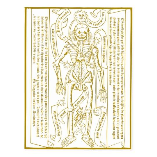 Cartão Postal Esqueleto esotérico