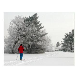 Cartão Postal Esqui do país transversal em um dia gelado