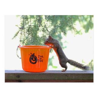 Cartão Postal Esquilo do Dia das Bruxas