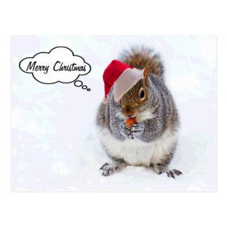 Cartão Postal Esquilo do feriado