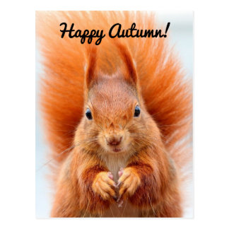 Cartão Postal Esquilo feliz do outono