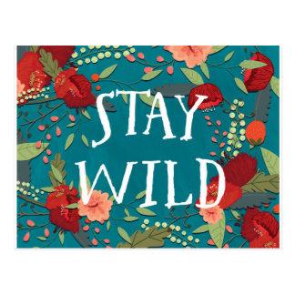 Cartão Postal Estada selvagem