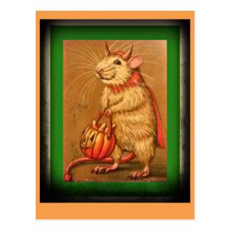 Cartão Postal Este rato velho