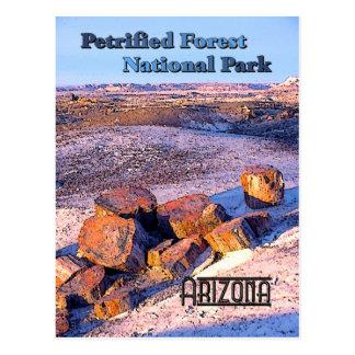 Cartão Postal Estilo do vintage da floresta Petrified
