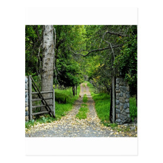 Cartão Postal Estrada de floresta ao jardim Enchanted
